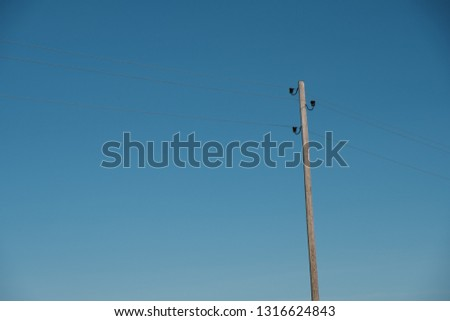 Wooden electricity poles on the roadside with clear blue sky. Single vintage electricity pole with wires and ceramic bells.  #1316624843