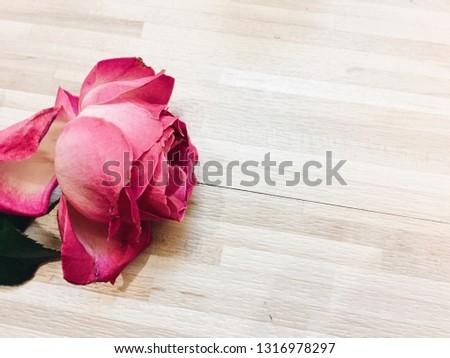 Rose petals and wooden floor #1316978297