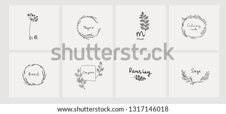 Hand drawn set of culinary herb. Basil and mint, rosemary and sage, thyme and parsley. Food design logo elements #1317146018