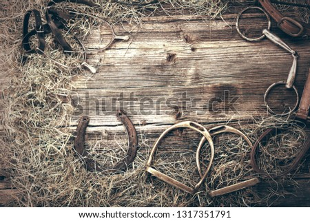 Horse equipments on wooden background with empty space for text, close up vintage view #1317351791