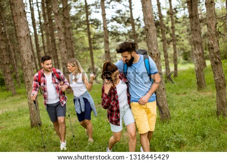 Group of four friends hiking together through a forest at sunny day #1318445429