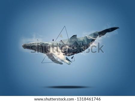 whale low polygon animal