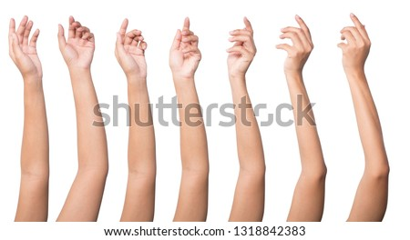 Set of woman hands isolated on white background. Royalty-Free Stock Photo #1318842383