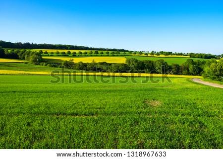 Taunus landscape in spring #1318967633