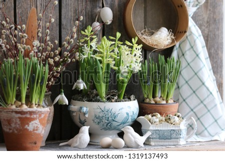 Easter composition with hyacinth in old antique tureen, quail eggs on straw, branches of willow in vase, vintage authentic primitive rustic decor with porcelain bird figurine on wooden background #1319137493