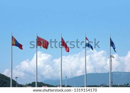 national state flags placed on flagpoles against the background of the summer sky #1319154170