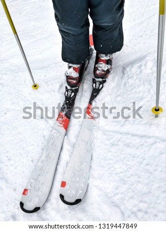 Picture of a person on skis. Only skis and feet visible. #1319447849