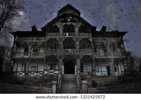 Haunted House with Dark Horror Atmosphere, many crows and a Black Cat with Green eyes. Haunted Scene House Royalty-Free Stock Photo #1321425872