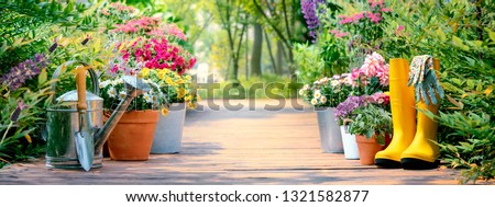 Gardening tools and flowers in the garden #1321582877