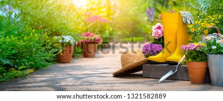 Gardening tools and flowers in the garden #1321582889