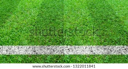 Soccer line in green grass of soccer field. Green lawn field pattern for sport for background. #1322011841