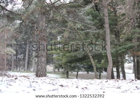 Last winter's day.. #1322532392