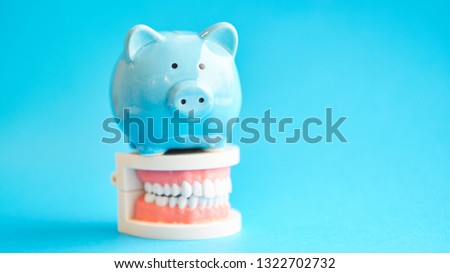 Piggy bank with White teeth model on blue background. tax offset concept. Medical Expense Deductions and Tax Breaks. affordable care act. high cost health care. dental expenses #1322702732
