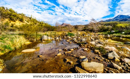 The almost dry Sycamore Creek in the McDowell Mountain Range in Northern Arizona at the Log Coral Wash Exit of Arizona SR87 #1322998640