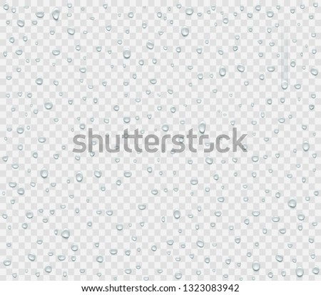 Water droplets of rain or spray isolated on transparent background. Condensate vapor on the glass. Vector illustration. #1323083942