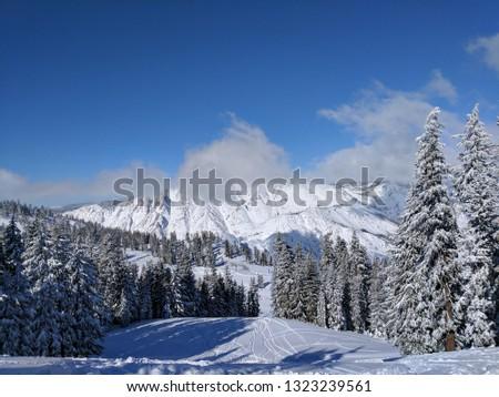 Sierra Nevada Foothills #1323239561