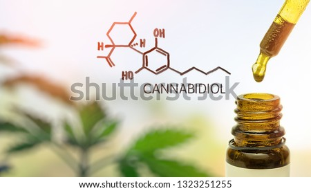 CBD Cannabidiol in pipette against Hemp plant with chemical molecule #1323251255