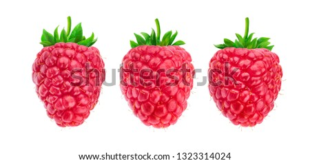 One raspberry isolated on white background with clipping path, collection #1323314024