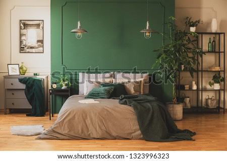 Industrial bookshelf and wooden commode in contemporary bedroom interior with urban jungle #1323996323