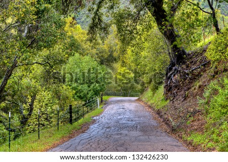 Country road and rolling green hills in spring, Central California #132426230