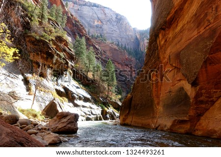 The Narrows At Zion National Park On A Sunny Day. #1324493261