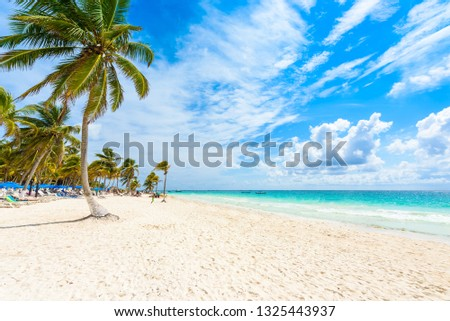 Paradise Beach (also known for Playa Paraiso) at sunny summer day - beautiful and tropical caribbean coast at Tulum in Quintana Roo, Riviera Maya, Cancun,  Mexico #1325443937