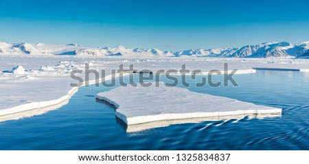 Arctic summer landscapes in Svalbard. Royalty-Free Stock Photo #1325834837