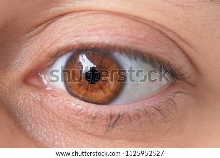 Female close up eye. Macro photography. #1325952527