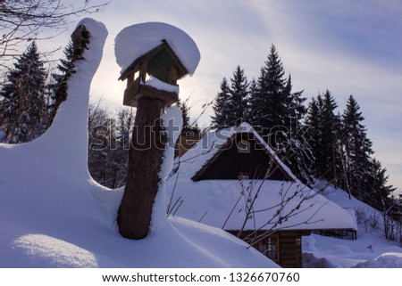 Folk wooden house in winter. Slovakian folk architecture and bird eating house. #1326670760