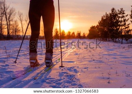 legs of girl cross-country skier, on sunset background, concept of winter sports and outdoor activities. #1327066583