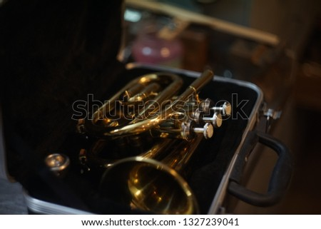 Trumpet and hands #1327239041