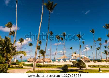 tropical resort landscape #1327675298