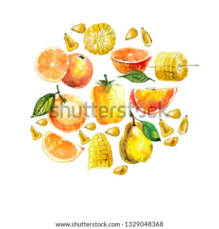 watercolor illustration with yellow fruits and vegetables. orange, in a cut, peach, Salak, sweet pepper, corn on a white background. #1329048368