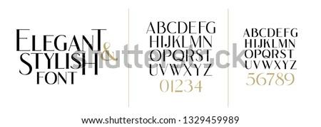 vector illustration. Stylish elegant vector composite font. set of letters english alphabet. uppercase letters, lowercase letters and numbers Royalty-Free Stock Photo #1329459989