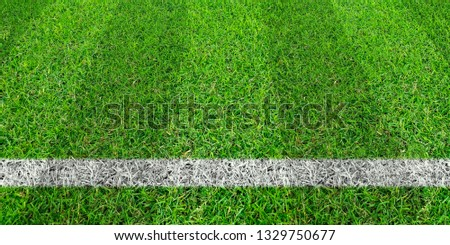 Soccer line in green grass of soccer field. Green lawn field pattern for sport for background. #1329750677