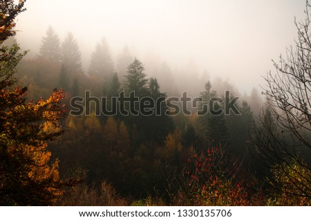 Autumn in the mountains #1330135706