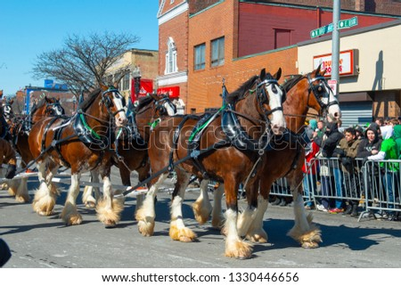 BOSTON, USA - Mar. 18, 2018: Horse drawn carriage in Saint Patrick's Day Parade in Boston, Massachusetts, USA. #1330446656