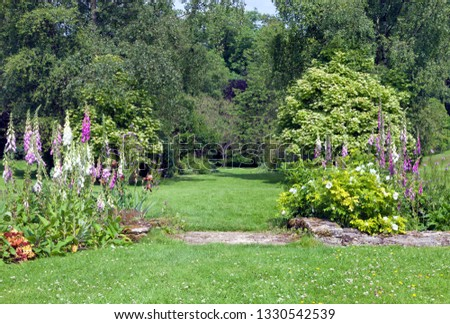 Colourful foxglove flowers, white roses, shrubs and leafy trees along a grass walking path in a charming garden in an English countryside . #1330542539