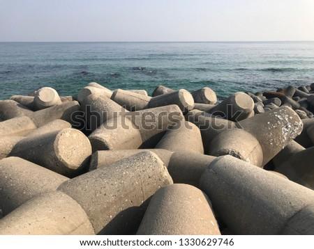 a sea view with Tetrapod #1330629746