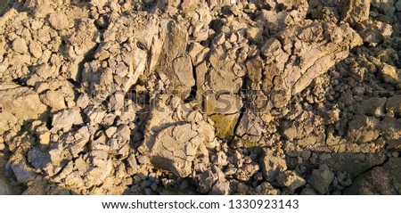 silt soil is a high fertility soil for agriculture, Silt is granular material of a size between sand and clay #1330923143