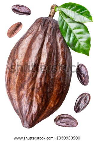 Cocoa pod with cocoa leaves and beans isolated on a white background. Clipping path. #1330950500