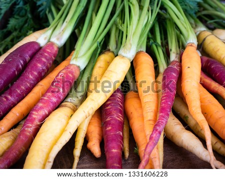 Bunch of freshly picked rainbow carrots with tops stacked waiting for dinner preparation #1331606228
