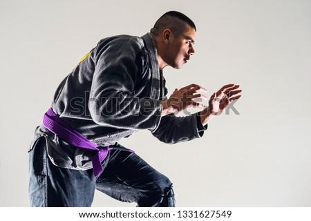 Brazilian Jiu JItsu BJJ Fighter in A Fighting Stance #1331627549