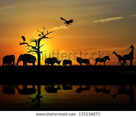 African Wild Animals Silhouettes Against A Sunset #133236875