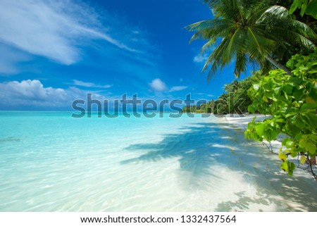 tropical Maldives island with white sandy beach and sea #1332437564