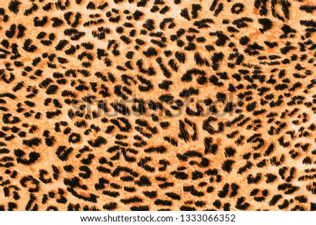 A picture of the wool of the leopard on the fabric. Close up leopard spot pattern texture background. Leopard print
