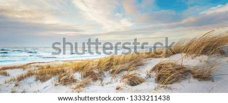 View over the danish north sea coast Royalty-Free Stock Photo #1333211438