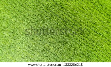 Aerial view of farmlands. Vintage tone. Bright and vivid green. Spring farmland. Taiwan farmland. #1333286318