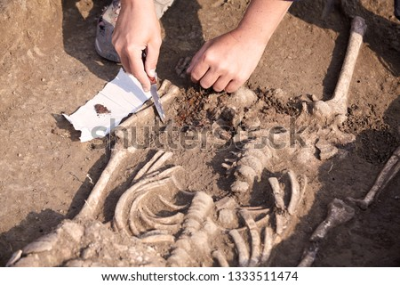 Archaeological excavations. The archaeologist in a digger process, researching the tomb, human bones, part of skeleton  in the ground. Hands with knife. Close up, outdoors, copy space.   Royalty-Free Stock Photo #1333511474