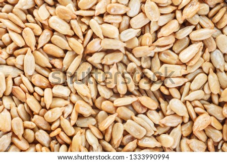 Peeled Sunflower Seeds Texture As Background. Top view. #1333990994
